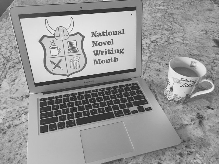 So You're Doing NaNoWriMo?